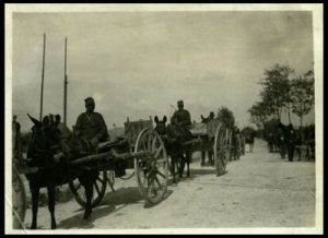Carretto siciliano sulla via del Carso
