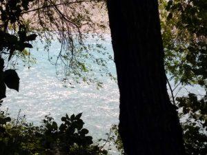 Le limpide acque dell'Isonzo