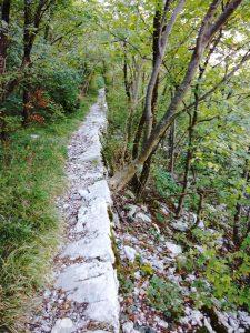 La mulattiera di guerra Salita al Monte Sabotino da Solkan