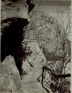 strada sul versante nord del Monte Sabotino