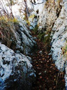 Il sentiero - trincea da Vratca sulla Salita al Monte San Gabriele