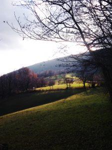 Prati Lato nord del Monte San Gabriele verso Ravnica