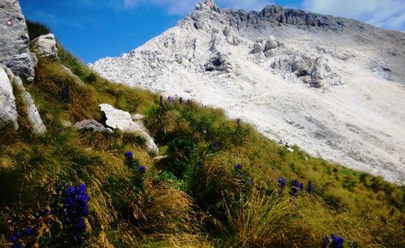 il crinale del Vrh nad Peski