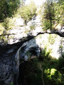 Il piccolo ponte naturale