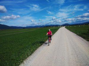 La strada bianca che porta da Dolenje Jezero