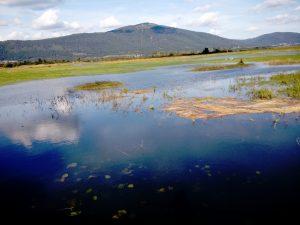 Il bacino del Cerkniško Jezero