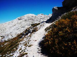 L'alta Val Resiana