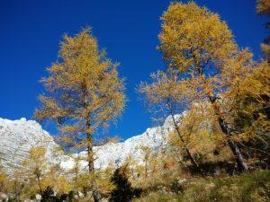 Salita al Monte Cregnedul