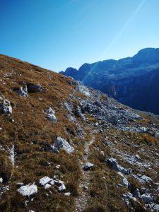 Sentiero sulla Plagnota in Salita al Monte Cergnedul