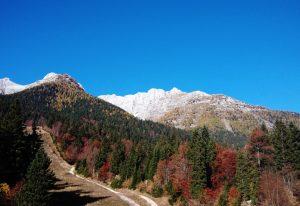 Il Monte Cregnedul Dal parcheggio di Sella Nevea