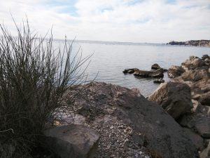 Trekking in Costiera Triestina