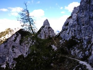Alta Via Cai di Moggio sentiero 425 Cima della Pecora