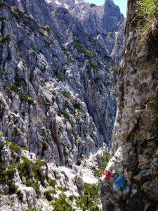 Anello Val Alba e Salita Monte Chiavals