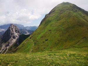 Il Monte Pizzul con i resti delle trincee da Forca di Lanza