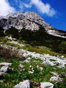 Anticima est sulla salita del Monte Zermula