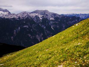 Il piano inclinato verso il Monte Zabus e di fronte il Monte Sart